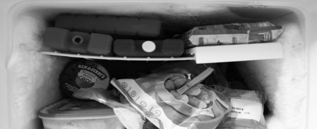 Food inside the freezer